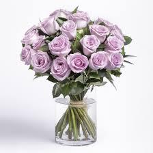 purple roses purple roses lavender delivery ode à la