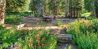albion basin campground outdoor project