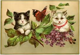 vintage kittens image the graphics fairy