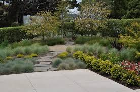 download contemporary planting ideas garden design