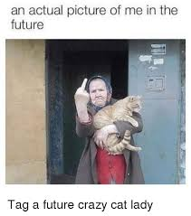 Funny Cat Lady Memes - an actual picture of me in the future tag a future crazy cat lady