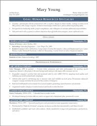 Mission Statement Examples For Resume Resume Summary Statement Examples Entry Level