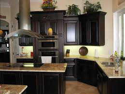 Kitchen Appliance Cabinets by Cabinets With Black Appliances The Best Appliance Finish For Your