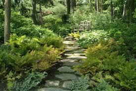 Shade Garden Ideas Shade Backyard Garden Ideas 15 Interesting Shade Garden Ideas