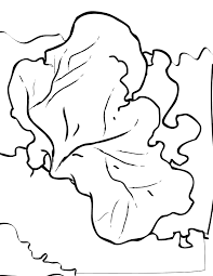 red sea fan coloring page handipoints