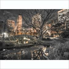 park new york asaf frank wall mural 315cm x 232cm central park new york asaf frank wall mural 315cm x 232cm