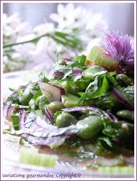 cuisiner les f钁es fraiches variations gourmandes salade de fèves fraîches céleri branche et