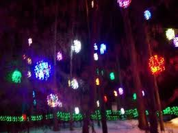 grapevine balls lighted grapevine balls in trees picture of jamestown