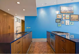 Types Of Kitchen Flooring Kitchen Cork Floor Types Overview Small Design Ideas