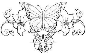 butterfly vines by supersibataru on deviantart