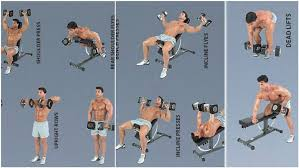 Bench Exercises With Dumbbells Dumbbell Training What Are The Benefits Of Training With