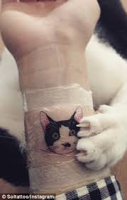 korean tattoo fail people in south korea risk jail time by getting tattoos of cats