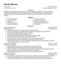 sample resume construction laborer persuasive essay for banning