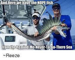 Funny Fish Memes - 25 best memes about nope fish nope fish memes