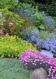Rock Garden Cground Rock Garden Perennials Hawe Park