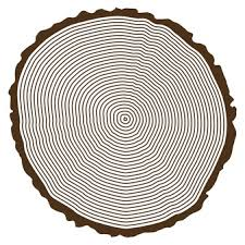 tree rings vectors photos and psd files free
