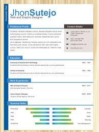 attractive resume templates attractive resume templates ideas collection attractive resumes