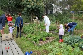 17 best 1000 images about community gardens on pinterest gardens