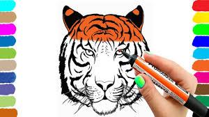 learning how to draw head tiger u0027s coloring page animals for kids