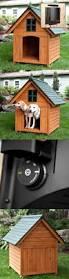 Are Igloo Dog Houses Warm Dog Houses 108884 Outdoor Extra Large Dog House Heated Wood Pet