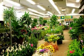 wholesale flowers nj and nyc wholesale flowers and garden center metropolitan
