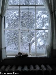winter windows acair fearann acair fearann