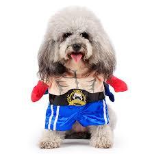 Halloween Costumes Boxer Dogs Buy Wholesale Boxer Dog Costume China Boxer Dog