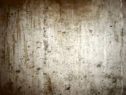 tasteful old concrete basement textured wall for rustic interior