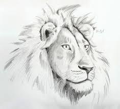 male lion by bananacosmicgirl on deviantart