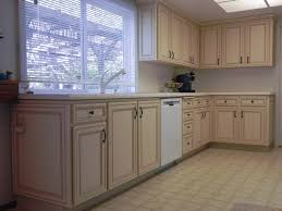 Kitchen Cabinet Facelift Ideas Remarkable Contemporary Kitchen Designs Ideas Cabinet Door