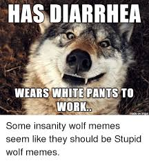 Meme Courage Wolf - 25 best memes about insanity wolf meme insanity wolf memes