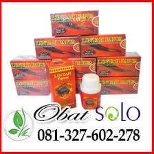 alamat agen minyak lintah papua di solo 081327602278