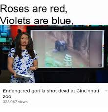 Roses Are Red Violets Are Blue Meme - awesome meme roses are red craveonline