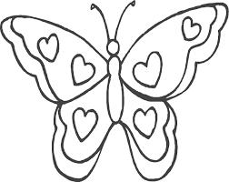butterfly pics color valentine butterfly butterfly color