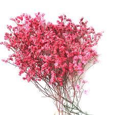 real flowers dried flowers yunnan flowers real flowers