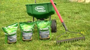 lawn care programs for do it yourself do it yourself lawn overseeding