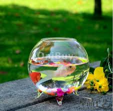 Glass Globes For Garden Online Buy Wholesale Glass Ball Vase From China Glass Ball Vase