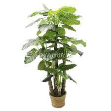 230cm height artificial green taro tree 5 trunks 52 leafs dongyi