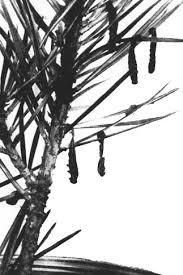 Methods Of Controlling Plant Diseases - unasylva no 78 fao iufro symposium on forest diseases and