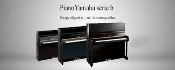 pianos de cuisine piano de cuisine d occasion leisure csfx piano de cuisson