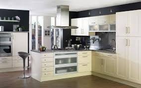 Should I Paint My Kitchen Cabinets White What Color Should I Paint My Kitchen Cabinets And How Do I Do The