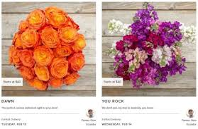free shipping flowers get a 40 farm fresh flower bouquet for 20 free shipping