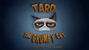 Tard The Grumpy Cat Meme - tard the grumpy cat cartoon youtube