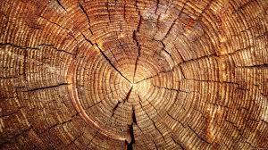 wood wallpaper on wallpaperget com