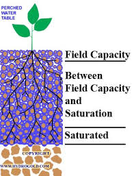 The Location Of The Water Table Is Subject To Change Soil Moisture Concepts Soil Water Plant Relationships Hydrogold