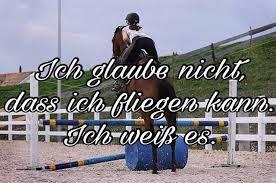 pferdesprüche pferdesprüche horsequotes instagram photos and