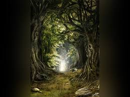 in the woods in the woods by gate to nowhere on deviantart