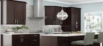 Stylish Kitchen Cabinets Rta Espresso Shaker Stylish Kitchen Cabinets