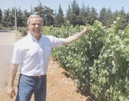 lebanese wine the elie maamari wine navigator lebanon château ksara