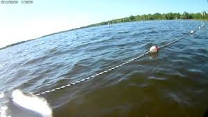Minnesota snorkeling images Snorkeling fish lake beach harris mn 6 03 2017 jpg